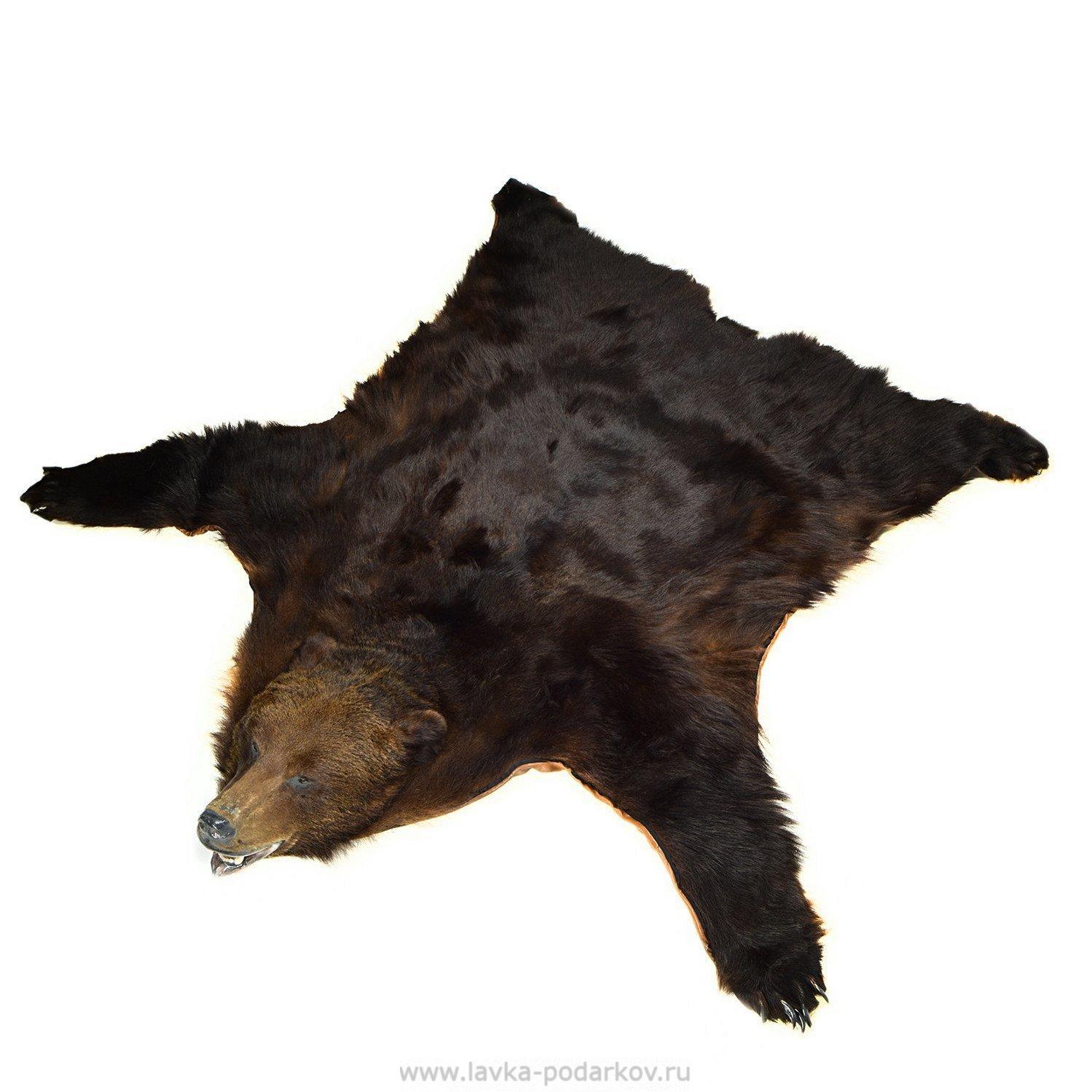 Шкура медведя в подарок